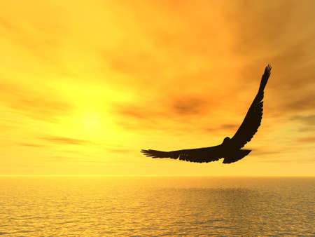 sunset lake: Eagle and a yellow decline. A soaring eagle above ocean Stock Photo