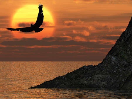 decline: Eagle and a yellow decline. A soaring eagle above ocean Stock Photo