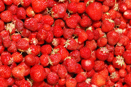 Strawberry background. A lot of bright, are fresh berries of a strawberry