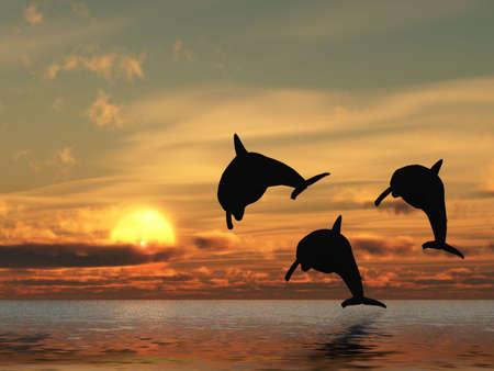 Tres delfines flotando en el océano de rojo atardecer