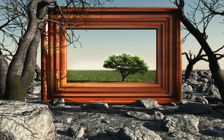 old picture: Frame with tree. A picture with a green tree on a background of dry trees and stones