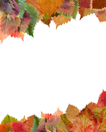 Frame from autumn leaves. Decorative registration isolated on a white background photo