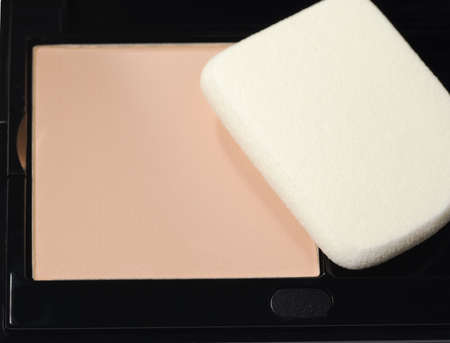 Powder. A subject for care of a leather of the face. A female toilet accessory Stock Photo - 5037064