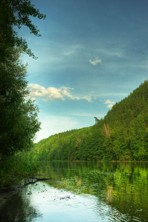 Picturesque forest and the river. Small river at bottom of mountain with mixed by a wood in the East Europe. Ukraine. Stock Photo - 5221842