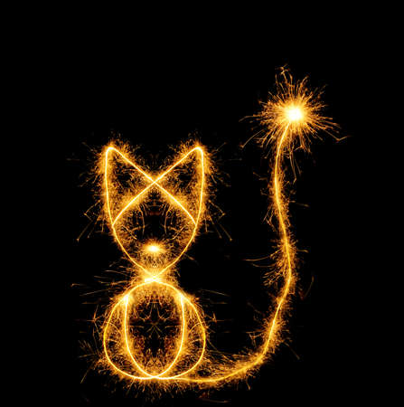The cat from bengal fires. Abstract the image of an animal sparks of fire Stock Photo - 5306252