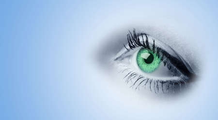 Female green eyes. A photo close up, a part face Stock Photo - 5418332