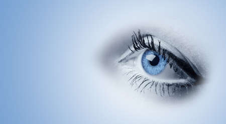 Female blue eyes. A photo close up, a part face Stock Photo - 5567573