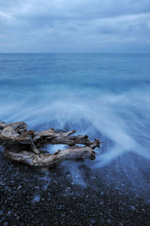 The night sea and timber. The sea photographed at a dawn with long endurance. Crimea, Ukraine photo