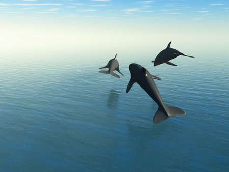 Three dolphins above the sea. 3d rendering.The rear view Stock Photo