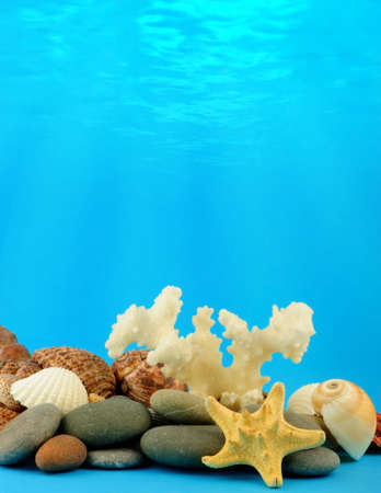 The underwater world. Pebble, cockleshells, a starfish on a background of underwater beams of the sun photo