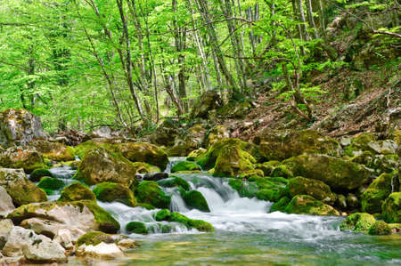 Mountain river. A stream of water in forest and mountain terrain. Crimea, the Grand Canyon.