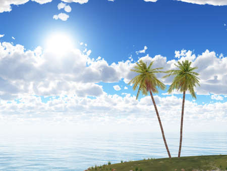 Island. Two palm trees on a background of the sea and the dark blue sky Stock Photo - 7118798