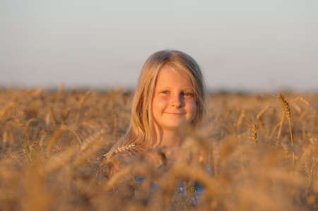 The girl in filed wheats. Warm light sunset Stock Photo - 7386568