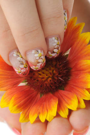Nail art. Female nails with figure of a camomile close up above a flower Stock Photo - 7455024