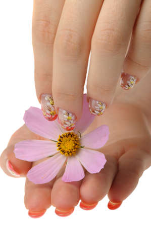 Nail art. Female nails with figure of a camomile close up above a flower Stock Photo - 7455031
