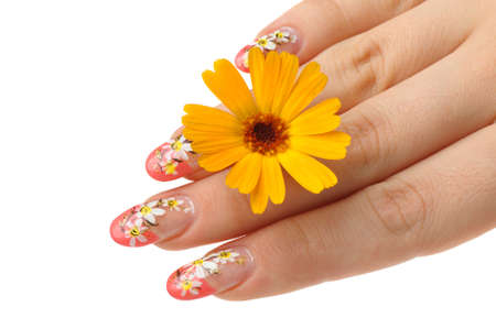 Female hand and flower. Nails with figure of a camomile Stock Photo - 7455032