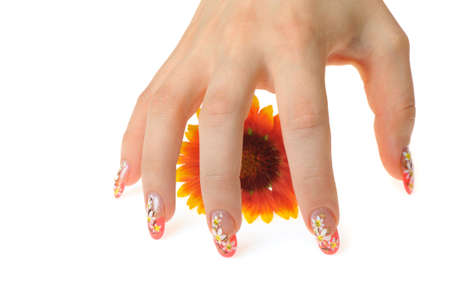 Female hand and flower. Nails with figure of a camomile Stock Photo - 7455028