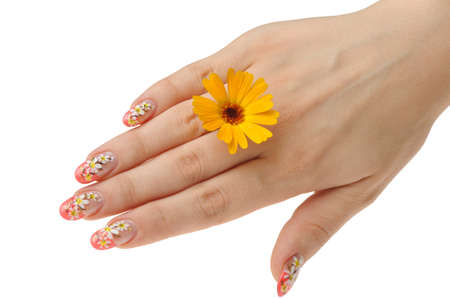 Female hand and flower. Nails with figure of a camomile Stock Photo - 7628332