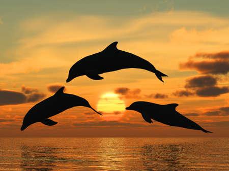 dolphin: Drie dolfijnen drijvend op Oceaan (controle licht)