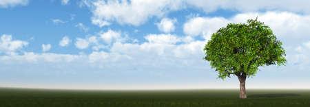 Tree on field. The bright blue sky. 3D Stock Photo - 7806769