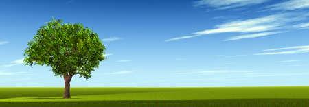 Tree on field. The bright blue sky. 3D Stock Photo - 7806834