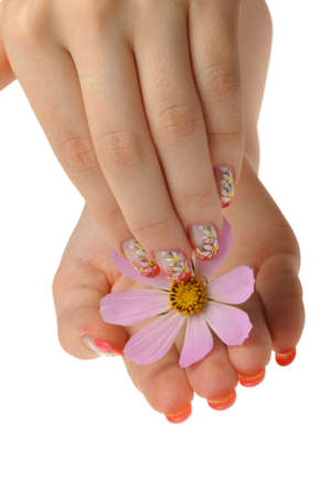 Nail art. Female nails with figure of a camomile close up above a flower Stock Photo - 7949023