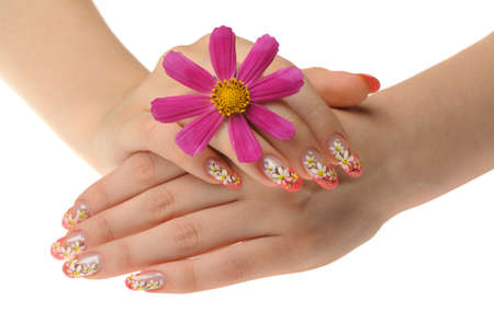 Female hand and flower. Nails with figure of a camomile Stock Photo - 8110963
