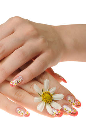 Female hand and flower. Nails with figure of a camomile Stock Photo - 8131310