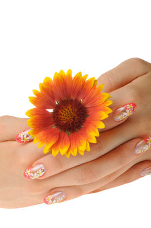 Female hand and flower. Nails with figure of a camomile Stock Photo - 8131346