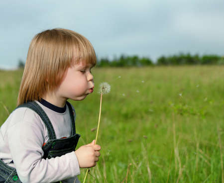 wish: The boy and a dandelion. The small child blowing on a flower of a dandelion