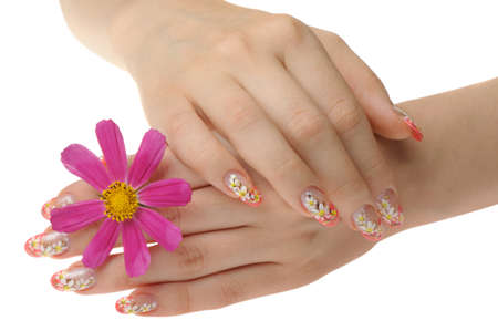 Female hand and flower. Nails with figure of a camomile Stock Photo - 8203636