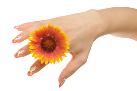 Female hand and flower. Nails with figure of a camomile Stock Photo - 8251215
