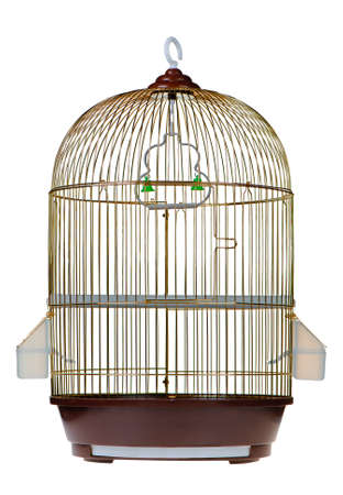 enclose: Gold cage. It is isolated on a white background.