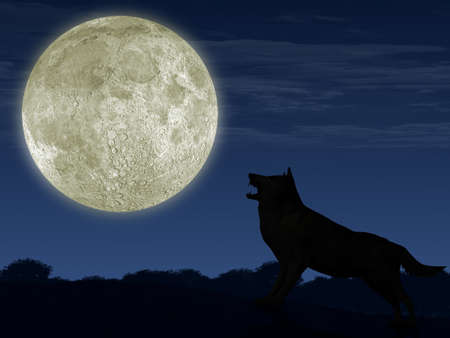 The wolf and the moon. The detailed illustration of an animal and beautiful landscape. illustration