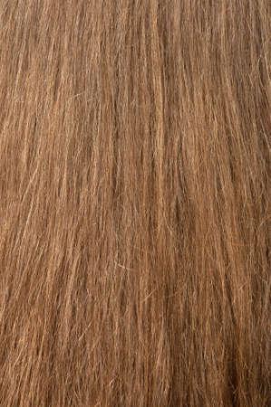 Female hair texture. The rear view photo