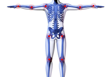 shoulders: Skeleton of the man with the centres of pains of joints. 3D the image of a mans skeleton under a transparent skin