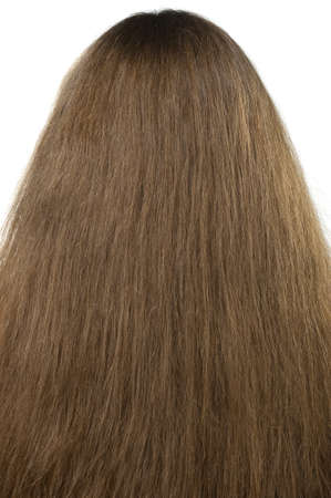 Female hair close up. The rear view photo
