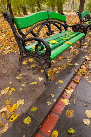 Autumn park. Rainy weather. The Lvov park photo