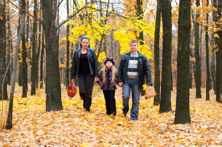 walk in: Family in autumn forest. Walk for hands of a happy family from three persons