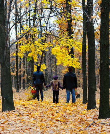 people from behind: Family in autumn forest. Walk for hands of a happy family from three persons