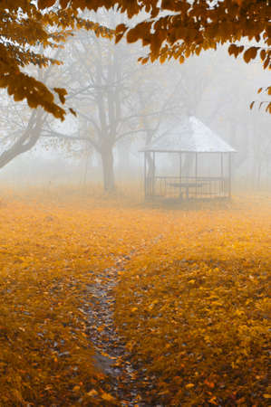 summer house: summer house in foggy forest. Autumn weather Stock Photo