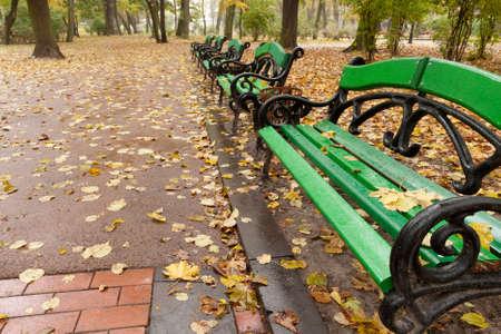 banc de parc: Automne parc. Temps pluvieux. Le parc de Lvov