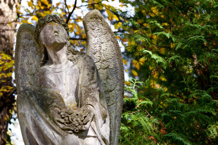 angel headstone: Monument to an angel on a cemetery. Since its creation in 1787 Lychakiv Cemetery Lvov, Ukraine Stock Photo