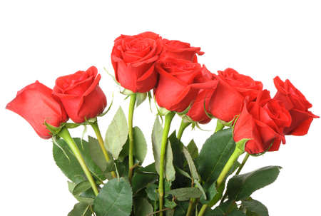 Bouquet of red roses. It is isolated on a white background photo