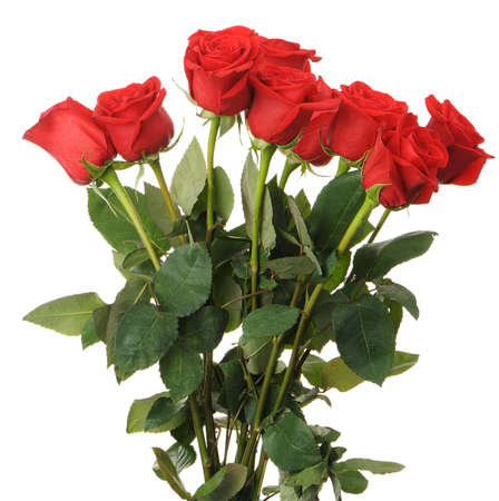 red head: Bouquet of red roses. It is isolated on a white background