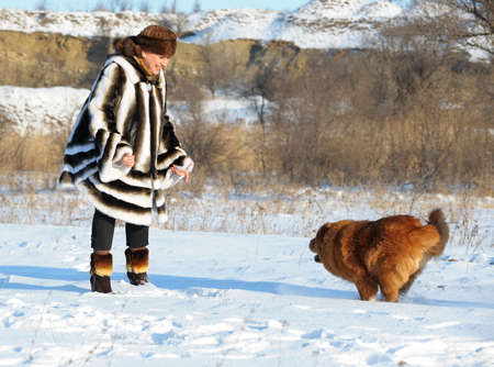 The woman in a mink fur coat plays with a dog. Winter weather photo