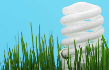 fluorescent lamp: Energy saving compact fluorescent lightbulb in a green grass and on a blue background Stock Photo