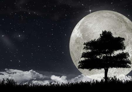 Silhouette d'un arbre contre la grande lune et le ciel étoilé. Banque d'images
