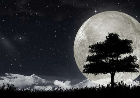 night landscape: Silhouette of a tree against the big moon and the star night sky.