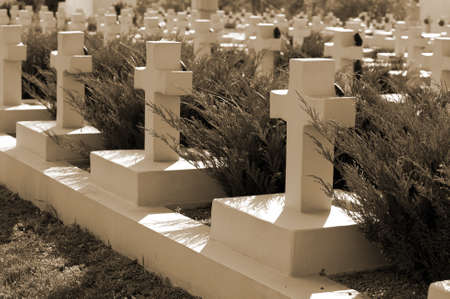 military cemetery: Military cemetery. Since its creation in 1787 Lychakiv Cemetery Lvov, Ukraine Stock Photo